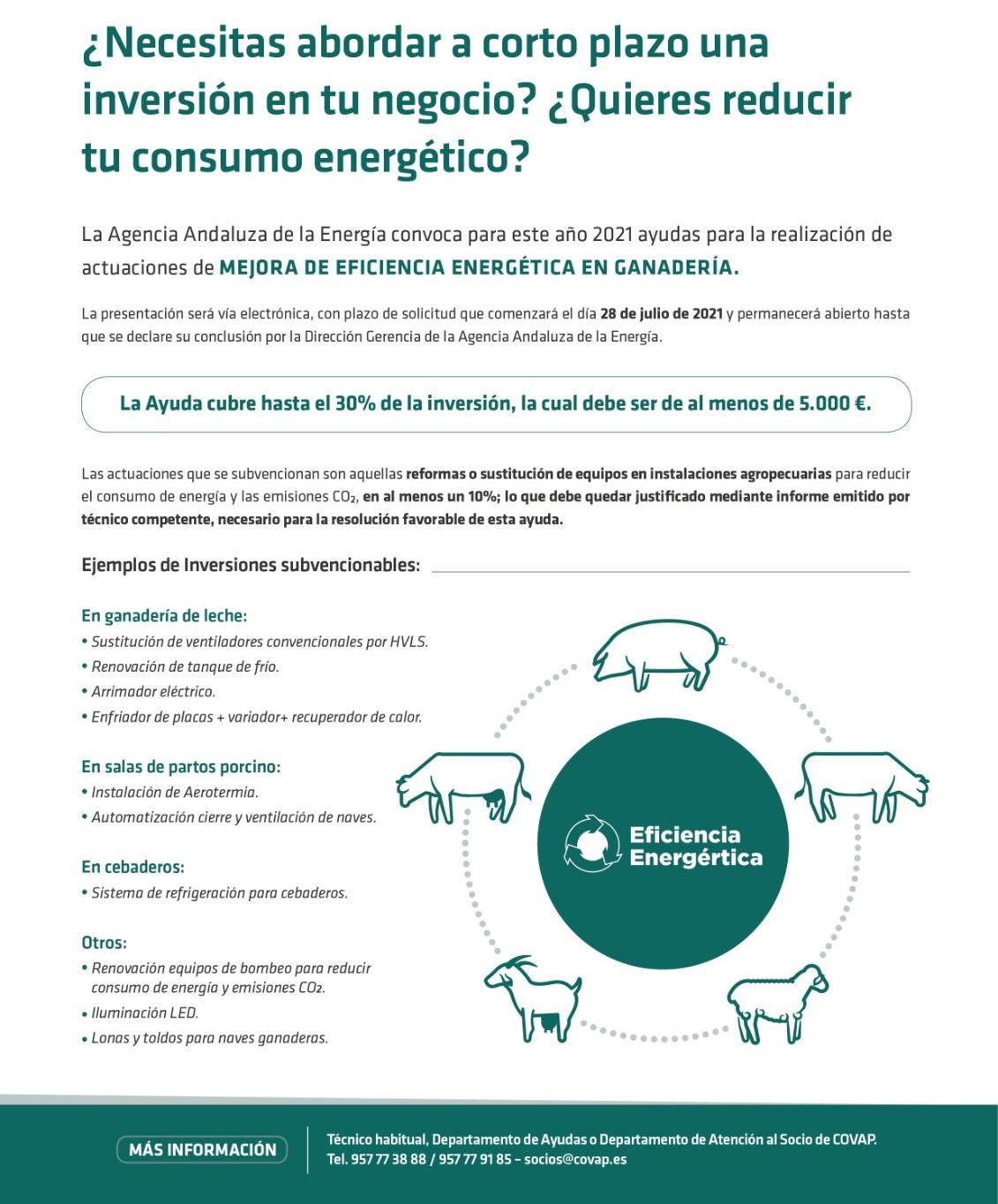 Ayudas a ganaderos